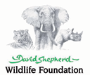 David Shepard Wildlife